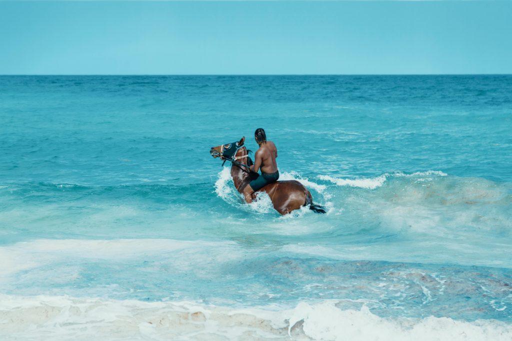 Traumprinz mit Pferd